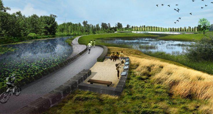 wetland pools 3